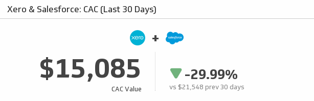 Salesforce KPI Dashboard | Cost to Acquire a Customer