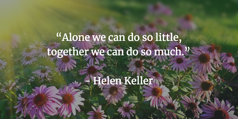 Alone we can do so little, together we can do so much. - Helen Keller