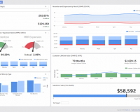 Article | What is a data dashboard?