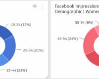 Social Media KPI | Facebook Page Demographics